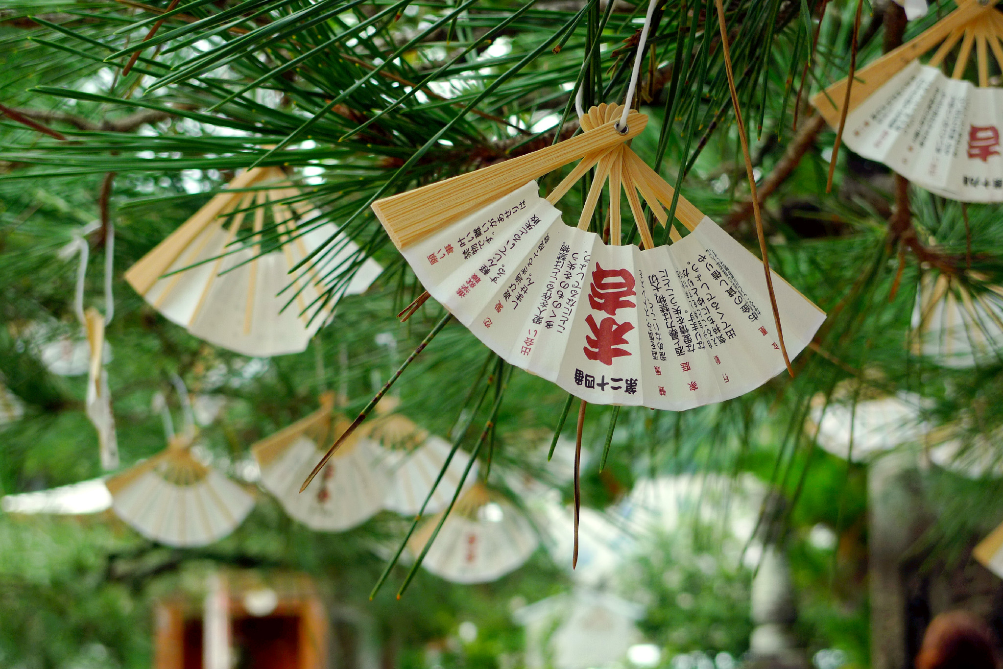 Amanohashidate: 5 Tipps zur Himmelsbrücke