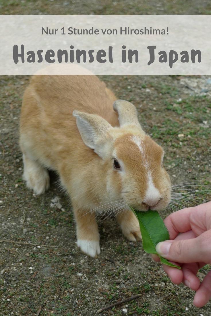 Haseninsel Okunoshima in Japan: Zwischen Flausch und Giftgas