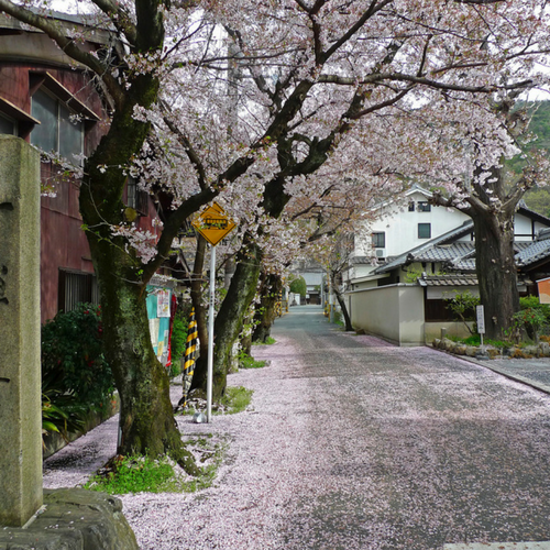 Reisezeit Japan
