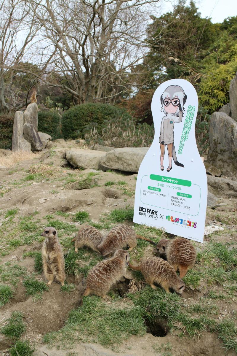 Nagasaki Bio Park: Ein Streichelzoo im Süden Japans
