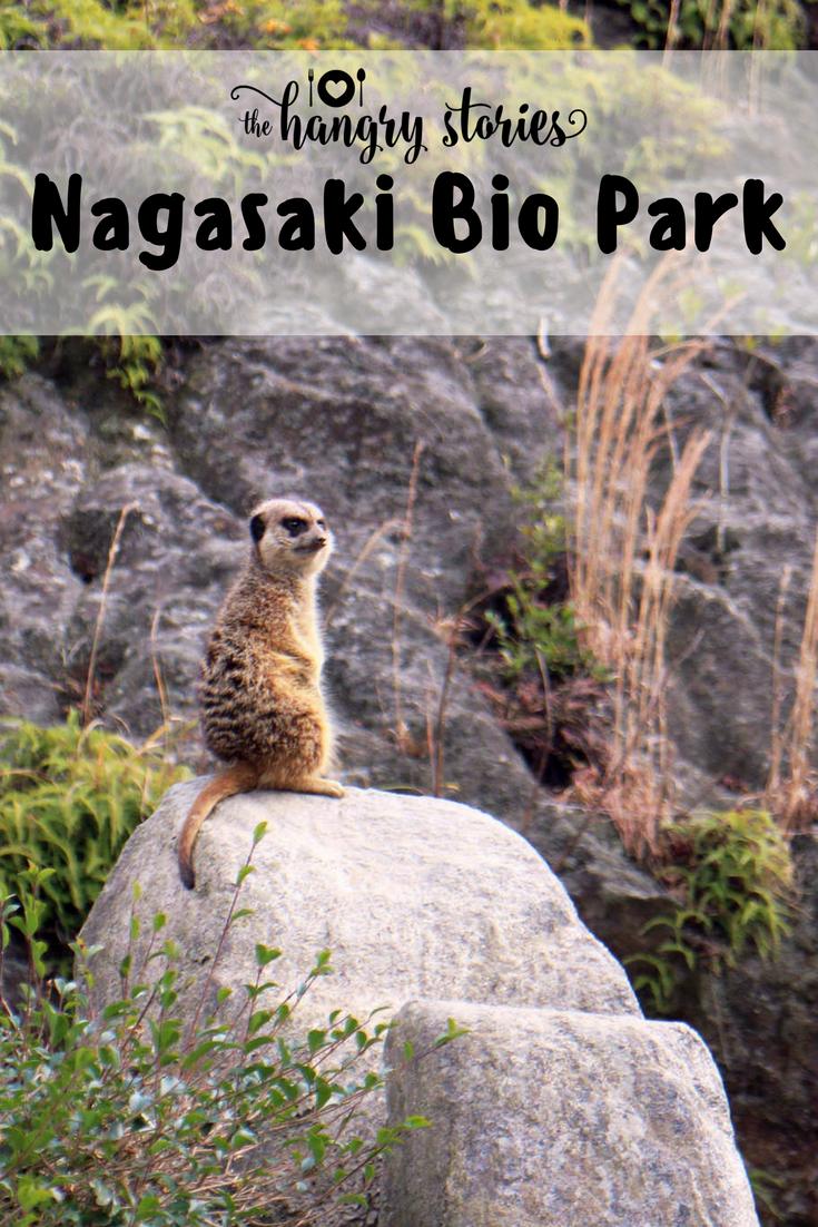 Nagasaki Bio Park Pinetrest