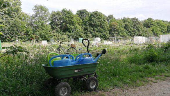 Krautgarten München: Rückblick Mai 2018
