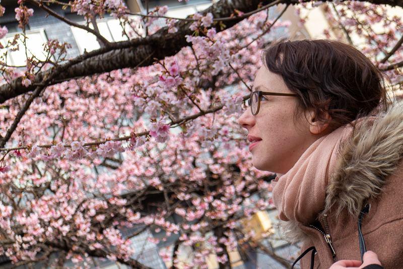 Atami Kirschblüte