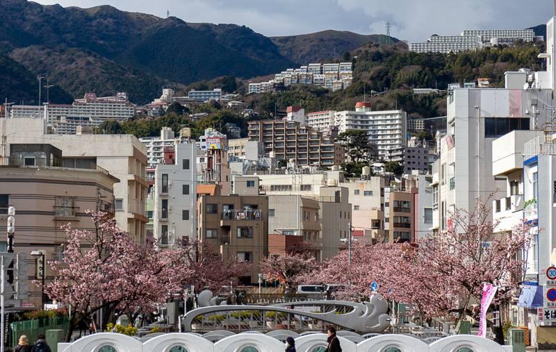 Atami Kirschblüte: Blick über die Stadt