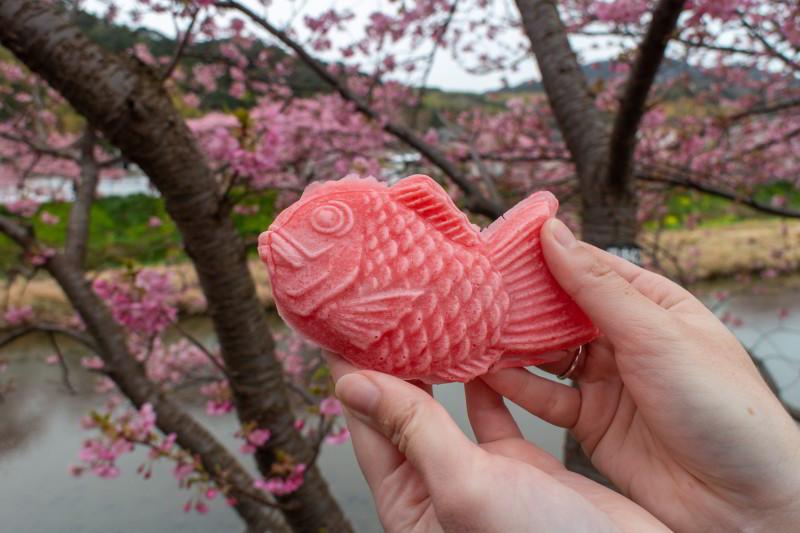 Sakura Taiyaki Kawazu