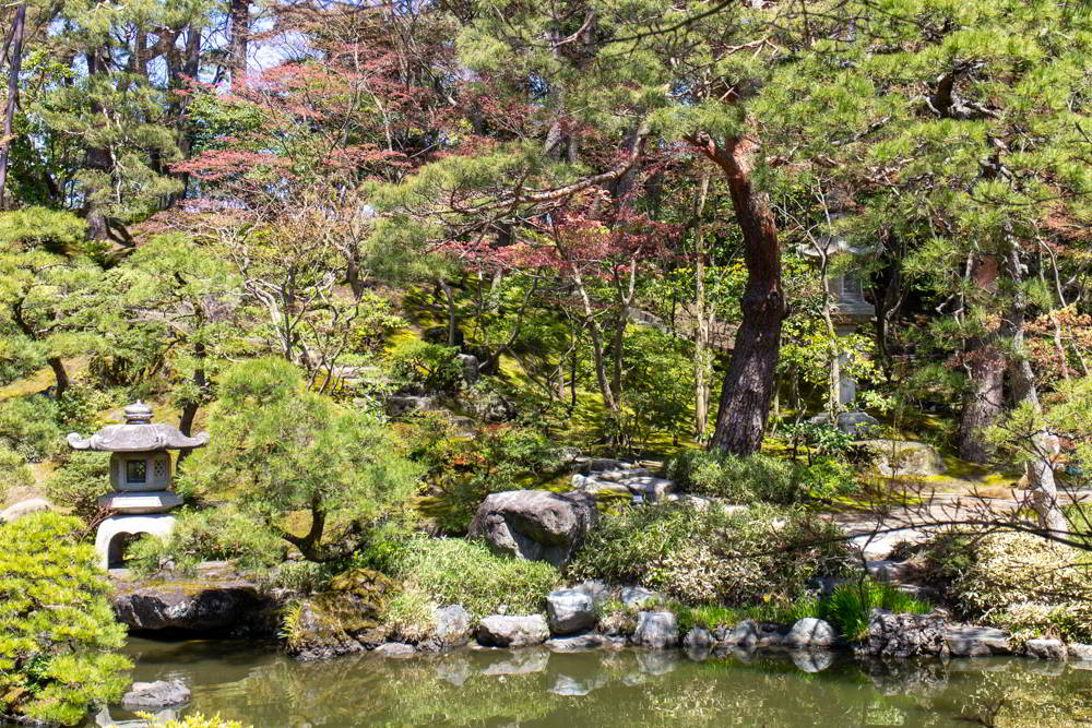 Der geräumige Garten des Saito-Anwesens in Niigata