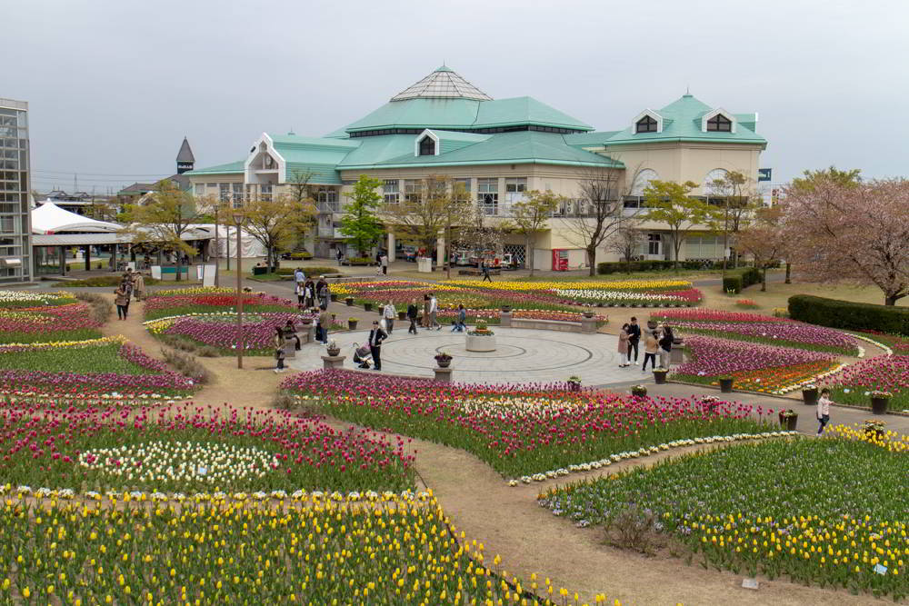 Tulpenfest am Furusato Mura in Niigata