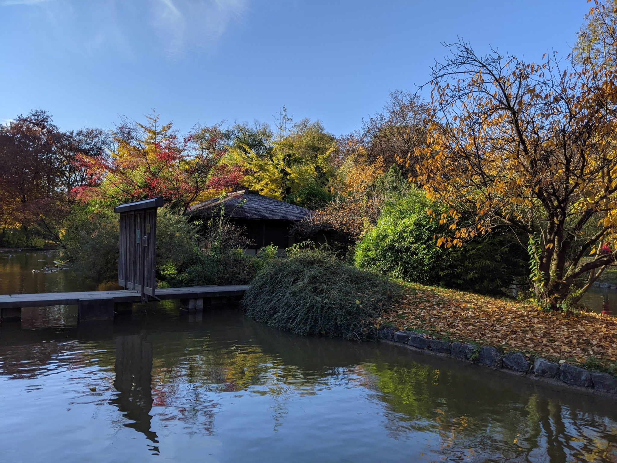 Japan-Weh: Teehaus im englischen Garten
