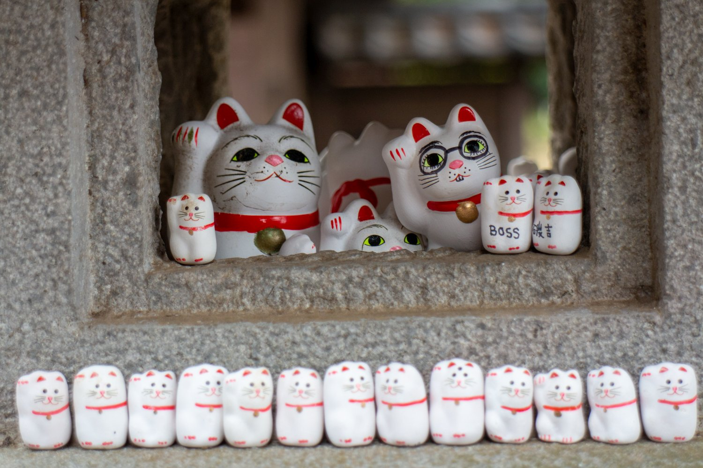 Katzen sind das Ding im Tempel, und dafür ist er auch berühmt und bekannt.