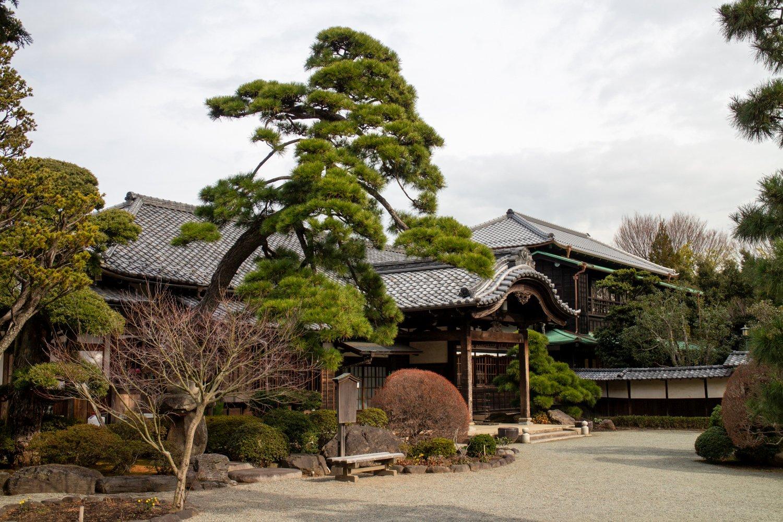 Der Gotoku-ji in Setagaya ist ein Ort der Ruhe. Ein bisschen entfernt von Shimokita aber definitive eine Reise wert.