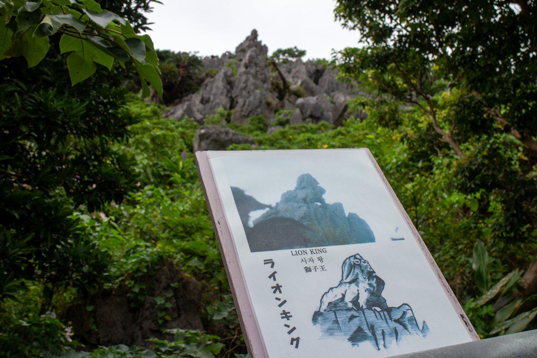 Es gibt ein paar Steine die... angeblich wie Tiere aussehen.