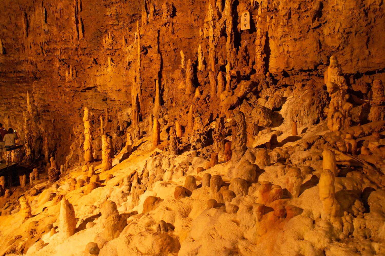 Die Okinawa-World ist ein Themenpark, der aber auch über große und wirklich tolle Tropfsteinhöhlen, die einen Besuch tatsächlich lohnenswert machen.