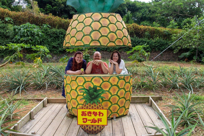 Auch in der Okinawa World gibt es Ananas...