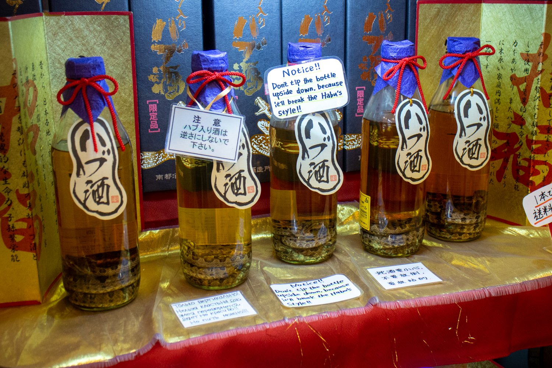 Eine der Spezialitäte Okinawas ist Awamori mit eingelegter Habu-Giftschlange. Achtung: der Import nach Deutschland ist verboten.